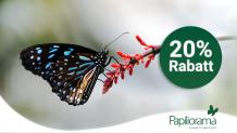 20% de réduction sur tous les prix d'entrée au Papiliorama Kerzers, le monde fascinant des animaux et des plantes! (dans la boutique en ligne).